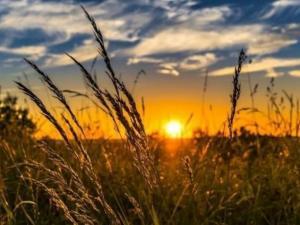 الطقس: ارتفاع ملموس وأجواء شديدة الحرارة