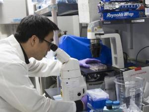 دراسة: جرعة لقاح كورونا المعززة مفيدة لمرضى سرطان الدم