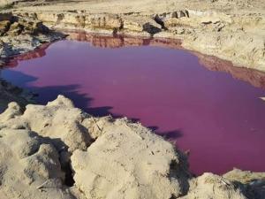 بركة حمراء غريبة بجانب البحر الميت تثير ضجة في الأردن