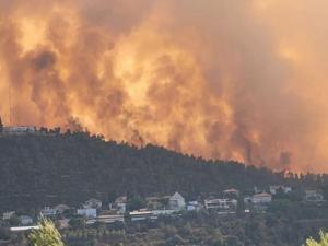 ليبرمان: 60 مليون شيكل تكلفة حرائق جبال القدس