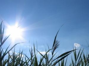 الطقس: أجواء خريفية معتدلة