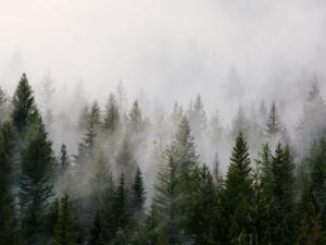 حالة الطقس: أجواء متقلبة وأمطار بنهاية الأسبوع